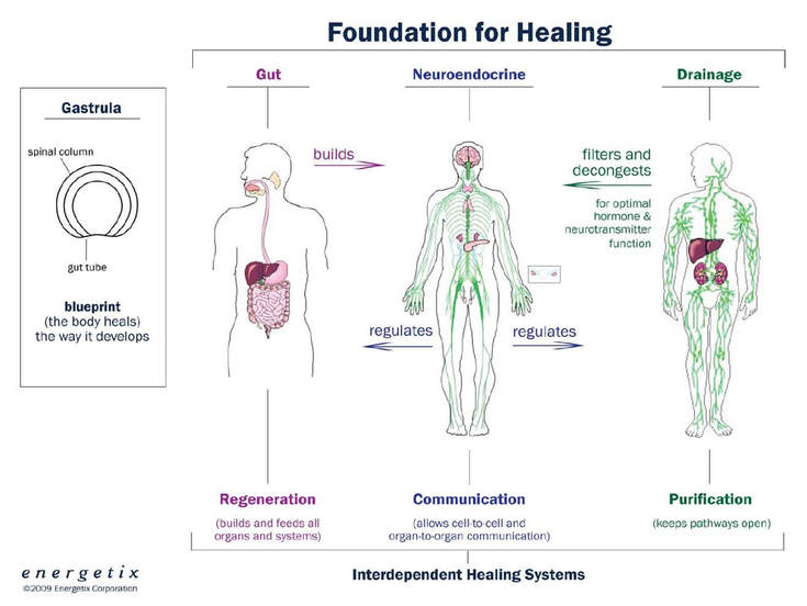Wisdom Blog - Well Balanced Holistic Health and Beauty